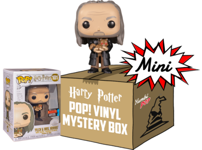 Mini Yumbi-Mystery Box Argus Filch with Mrs. Norris + 2 pop! Harry Potter