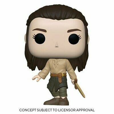 PRE-ORDER Game of Thrones Arya Training Pop! Vinyl Figure