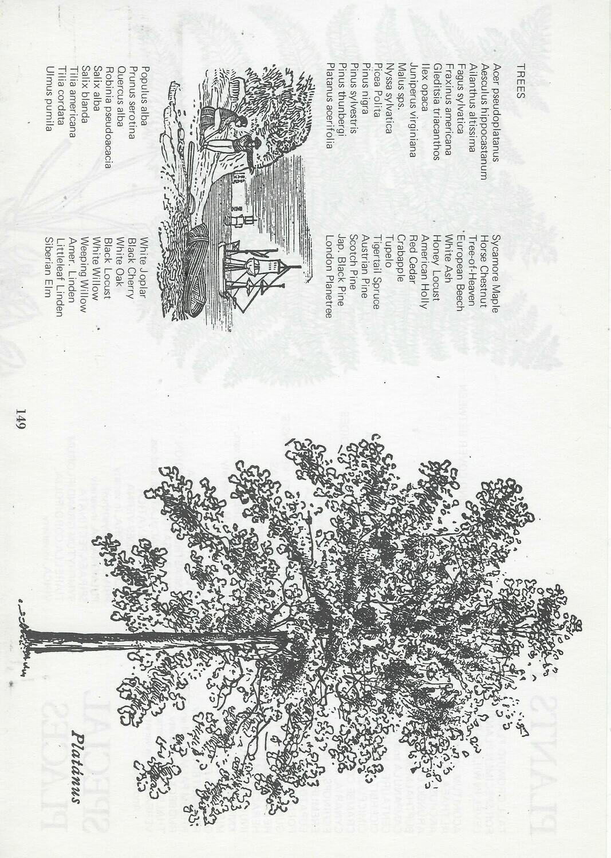 Vintage Tree Book collage pak Instant Download
