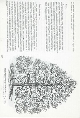 Vintage Tree Book collage pak ***PRINTED VERSION*** 12 pages