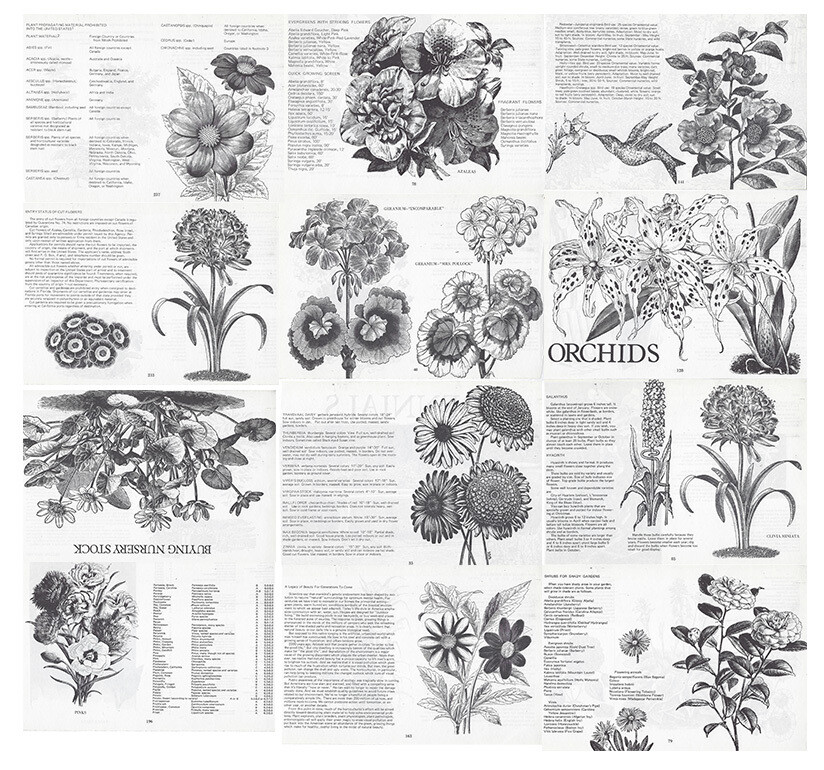 Vintage Plant Book collage pak Instant Download
