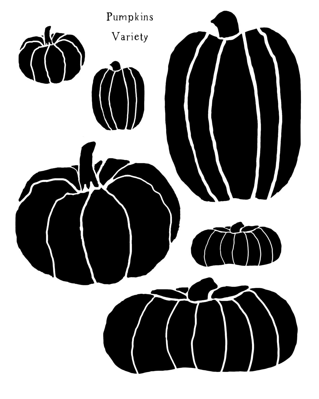 Pumpkins Variety stencil 8x10