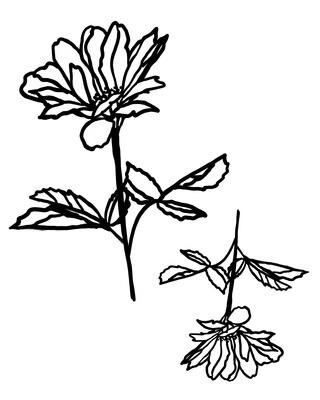 Flower Mask 1 stencil 12x16