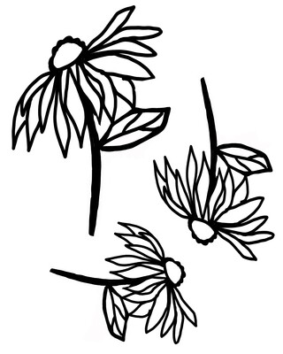 Cone Flowers with masks stencil 8x10