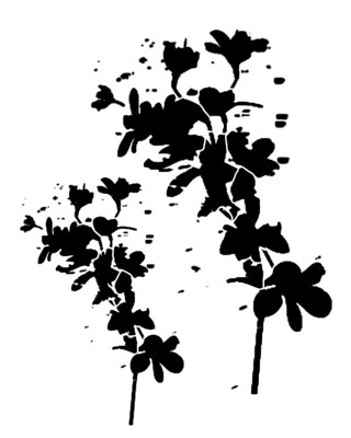 Messy Flower Silhouette stencil 12x16