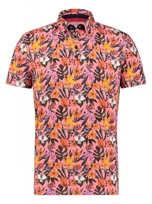 """A Fish Named Fred Polo """"floral"""" jersey 22.03.333 roze"""