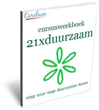 21xduurzaam cursuswerkboek