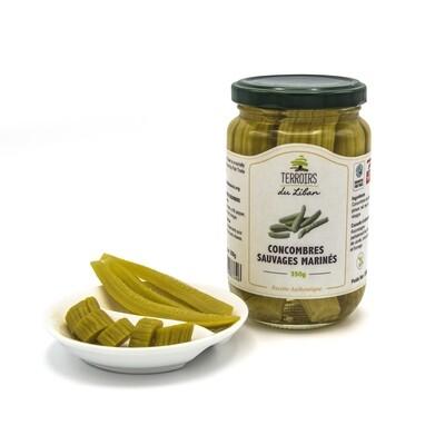 Concombres sauvages marinés -  Pickles