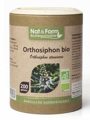 Orthosiphon - 200 gélules