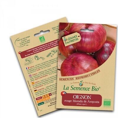Oignon rouge Morada de Amposta - 0.6g