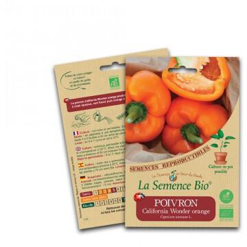 Poivron california wonder orange - 0.15g