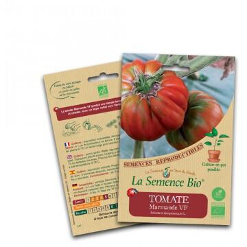 Tomate marmande - 0.1g