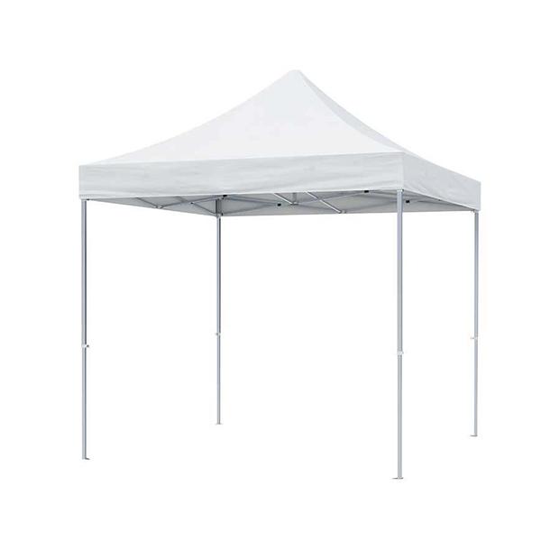 10' x 10' Standard Tent Kit