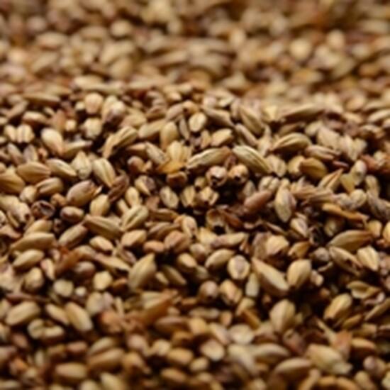 Briess Caramel Malt 40L