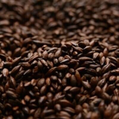 Briess Roasted Barley