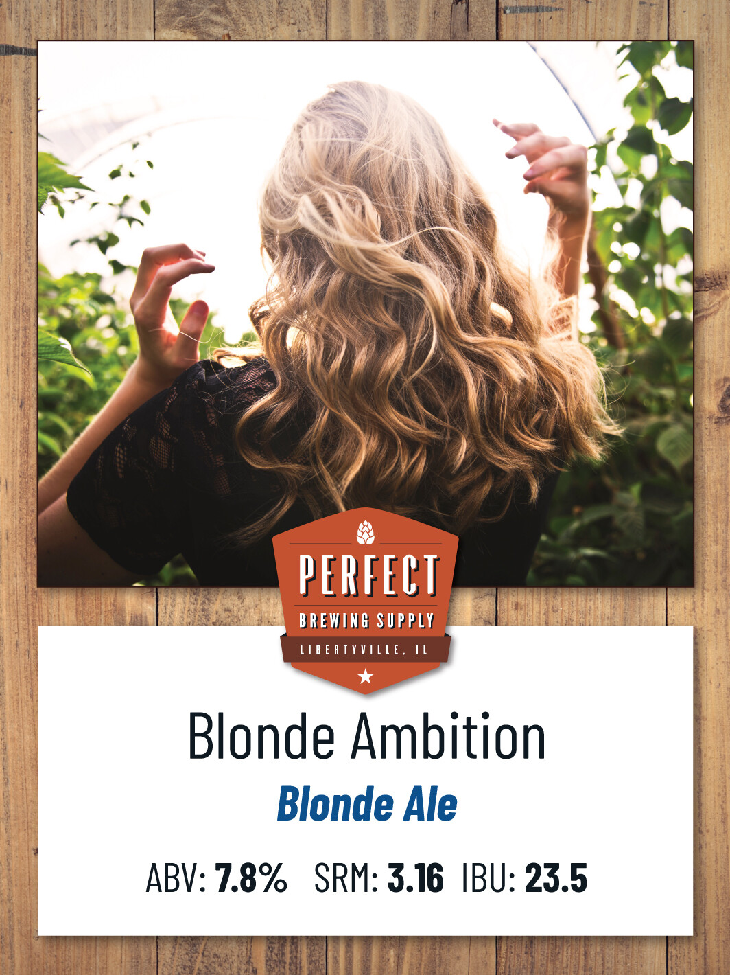 Blonde Ambition - PBS Kit All Grain