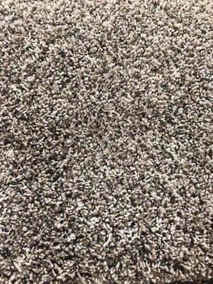 Carpet - French Press