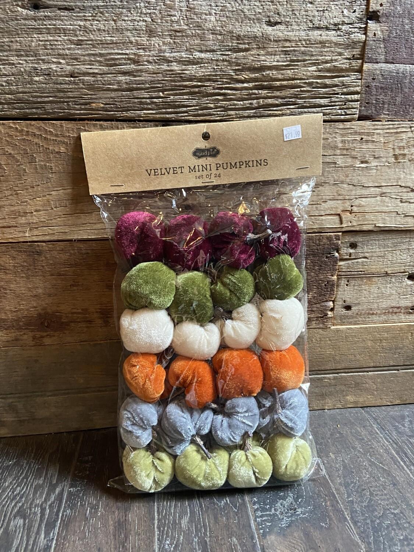 Velvet Tiny Pumpkin Set