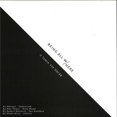 Being All Vinyl 2