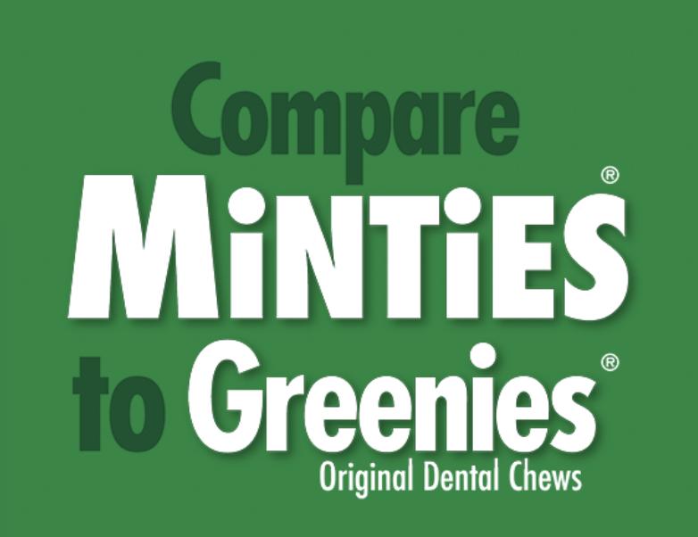 Minties Maximum Mint Dental Bones TNY/SM 24 oz 60 ct