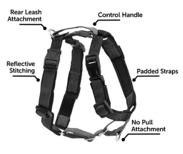 PetSafe 3-in-1 Harness and Car Restraint Black Medium