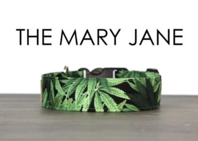 So Fetch Co. The Mary Jane Medium Collar