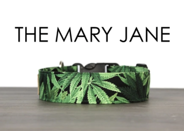So Fetch Co. The Mary Jane Small Collar