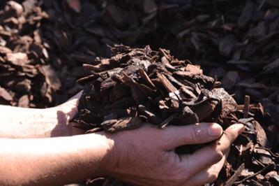 Bark Chips (Mulch) Bulk 1 cub meter