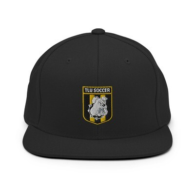 Snapback Hat (Colored Crest)