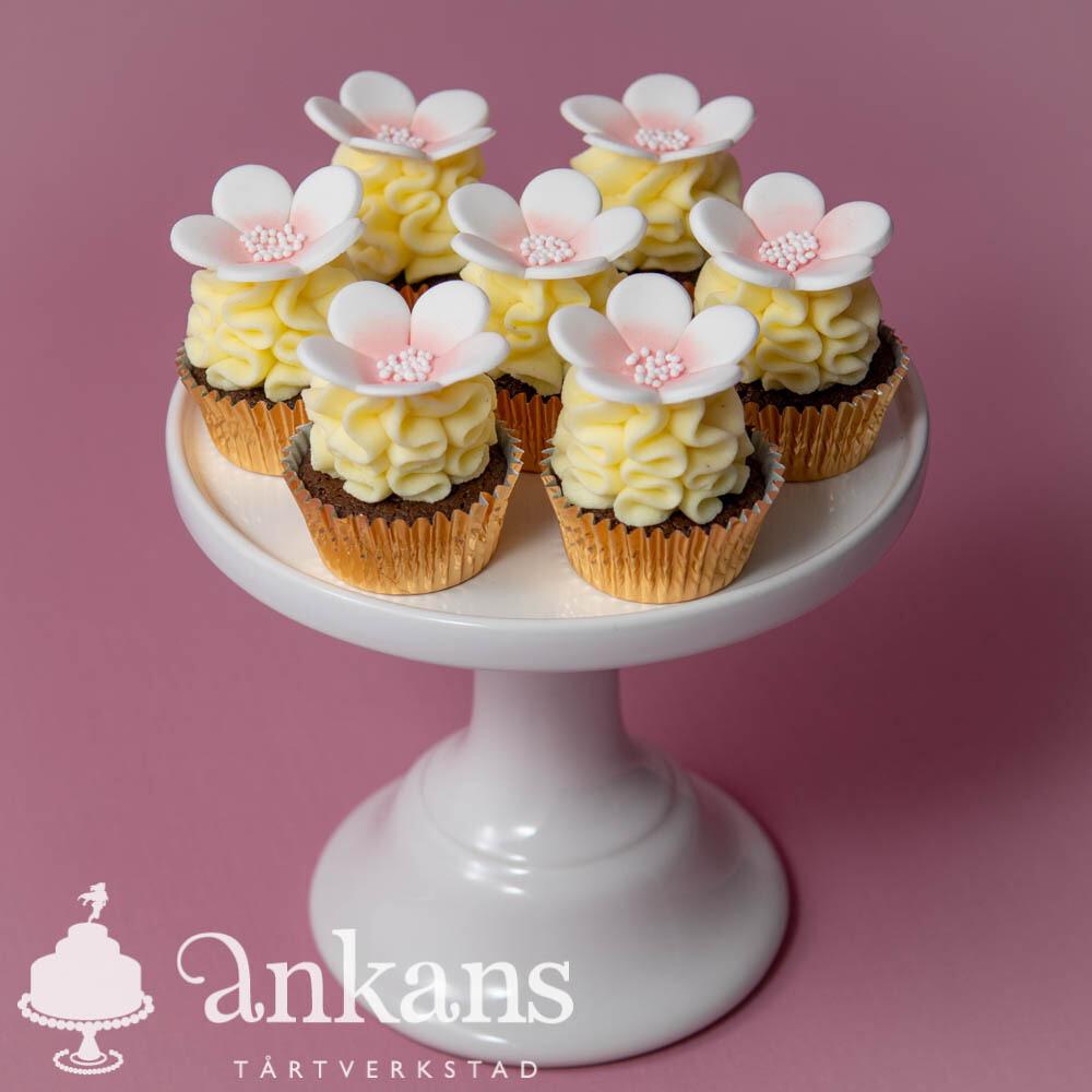 Minicupcakes med sockerblomma