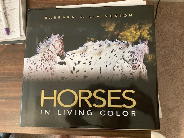 Horses in Living Color