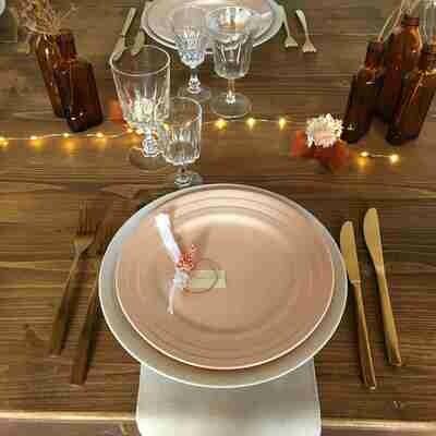 Assiette porcelaine saumon plate