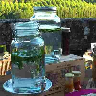 Fontaine à boisson 3,5 litres