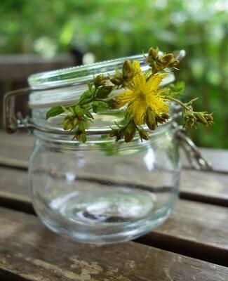Den Sommer konservieren- Rotöl ansetzen an Johanni