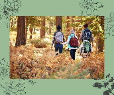 Familienkräuterwanderung in den Herbstferien