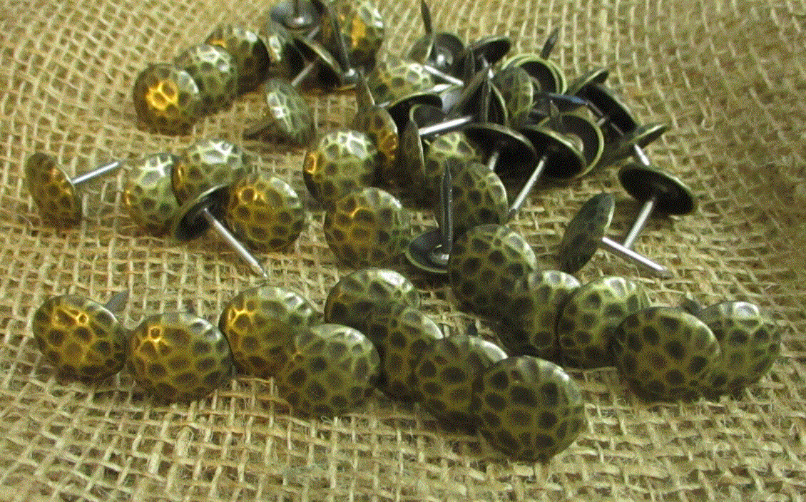 Clavos Decorative Nail Heads Rustic Worn Brass Finish .75