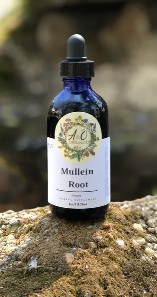 Mullein Root Tincture