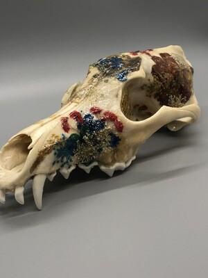 Blue & Red Half Coyote Skull