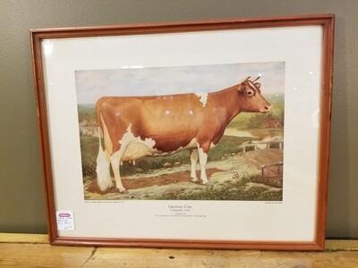 Guernsey Cow- Ross Butler- Print