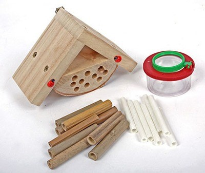Wildlife National Trust Collection Bug House Kit