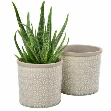 Burgon & Ball Set of Two Porto Glazed Pot Tuscany Grey