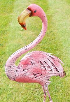 Fanny Flamingo