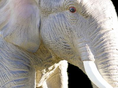 The Boundah Elephant