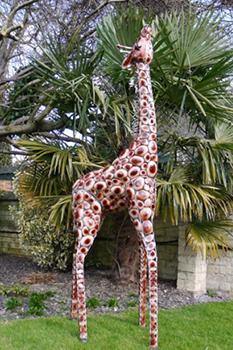 The Lofty Giraffe