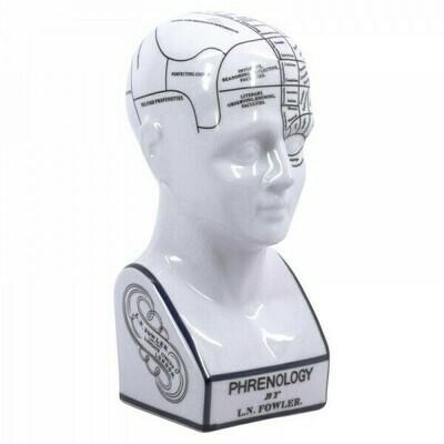 Phrenology Head - Small