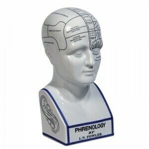 Phrenology Head - Large