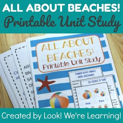 All About Beaches Unit Study