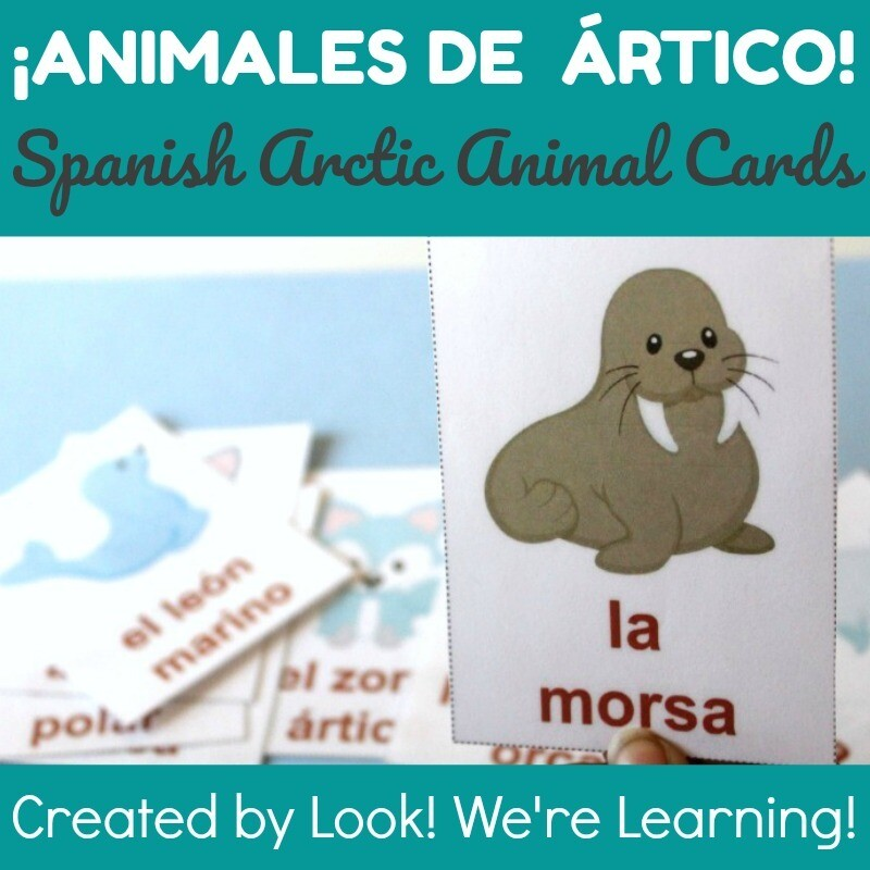 Printable Spanish Flashcards: Spanish Winter Animal Flashcards