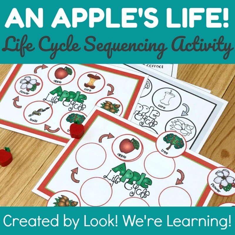 Apple Life Cycle Science Sequencing Activity