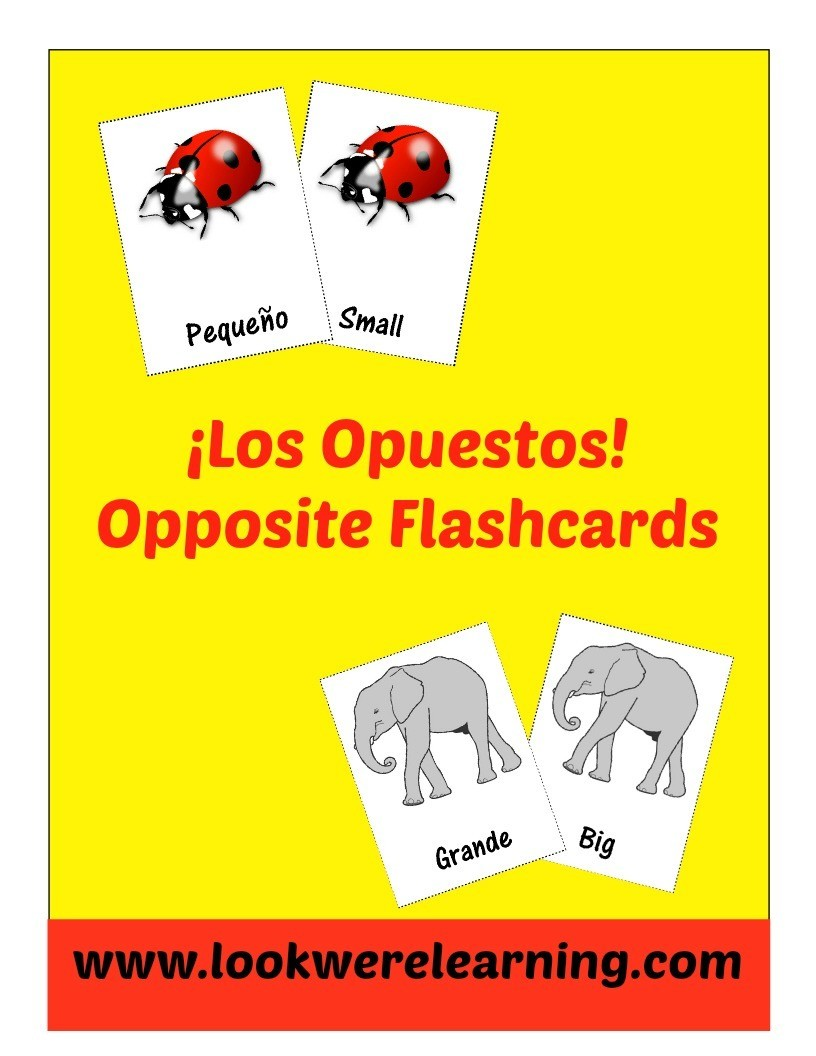 Spanish Opposites Flashcards